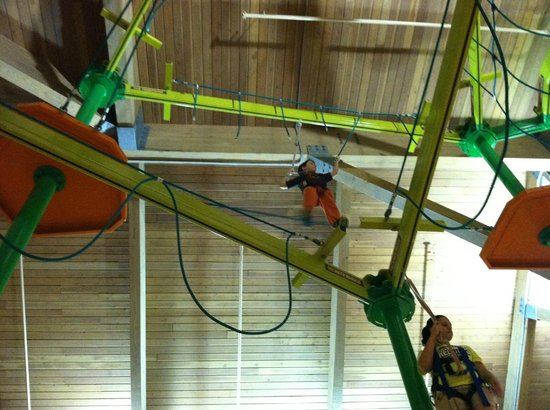Splash Lagoon Indoor Water Park Resort :                   Tree Tops climb