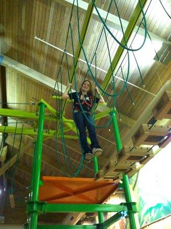 Splash Lagoon Indoor Water Park Resort :                   Tree Tops Climbing