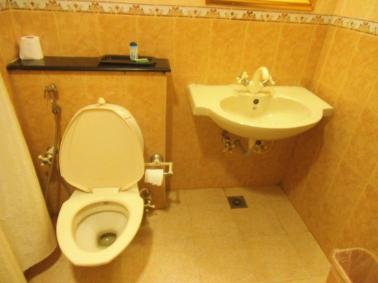 Star City Hotel & Serviced Apartments:                   banyo