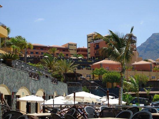 Vistas hotel picture of melia jardines del teide costa for Melia jardines del teide