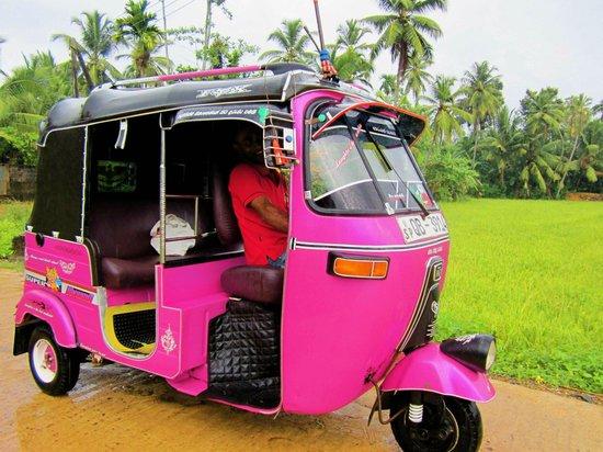 Kingfisher Hotel:                   Pink tuktuk