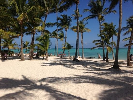 Barcelo Bavaro Palace Deluxe:                   la spiaggia