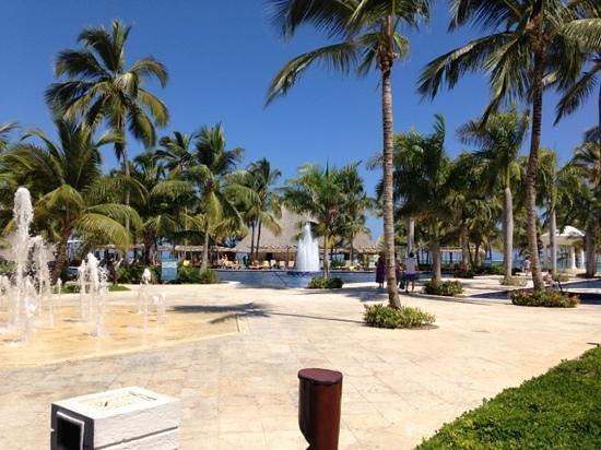 Barcelo Bavaro Palace Deluxe:                   piscina
