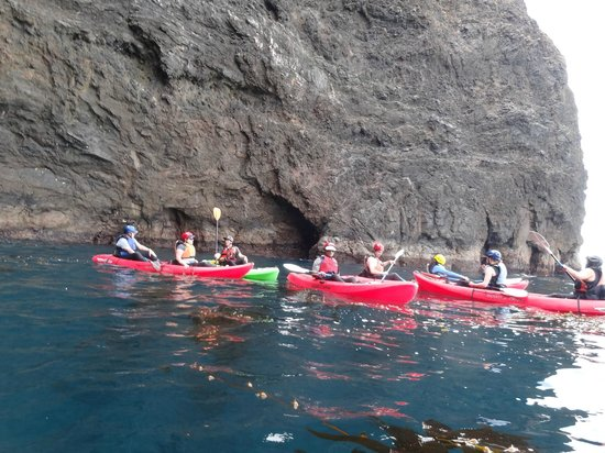 Paddle Sports Center:                                     Kayaking Tour