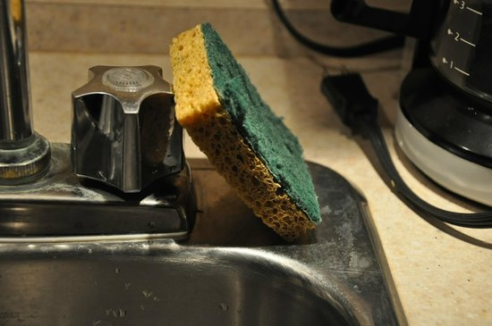 Le Chamois:                                                       Dirty and unhygienic scourer left from man