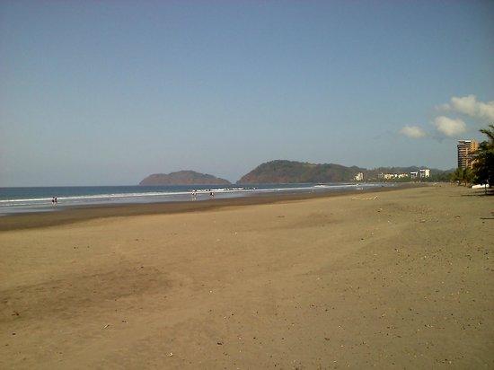 La Paloma Blanca:                   Beach front of Condo