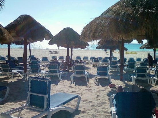 Sandos Playacar Beach Resort:                   c'è molto posto,ombra e sole garantite a piacere!
