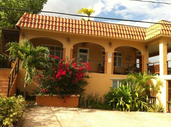 Villa Coral Guesthouse:                   Villa Coral