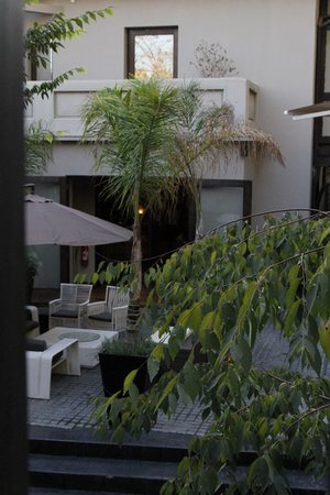 The Aubrey Boutique Hotel:                   From the bar                 