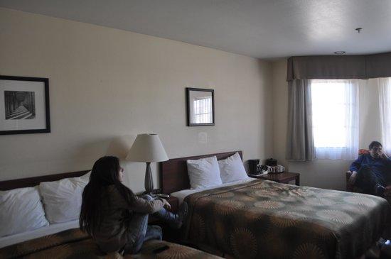 Buena Vista Motor Inn: Vista desde la ventana de la habitación