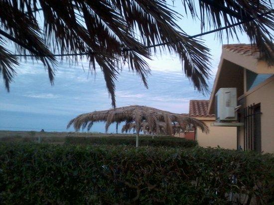 Camping L'Aube:                   uitzicht tuintje bungalow