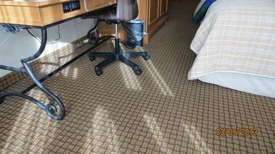 Millennium Buffalo:                   carpet is clean