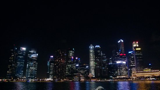Marina Bay Sands:                   Night View of Singapore