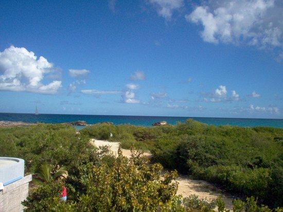 Mangrove Villas at Indio Reef: View of Ocean