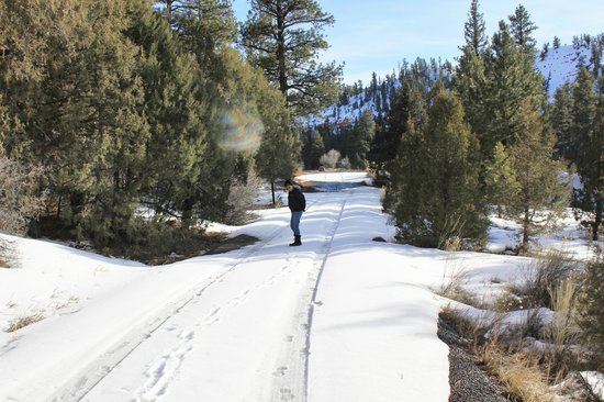 Best Western Plus Bryce Canyon Grand Hotel: snowshoe or cross country ski
