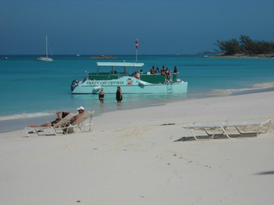 Paradise Island Harbour Resort All Inclusive:                   enjoy the Party Cat Cruse to Rose Island