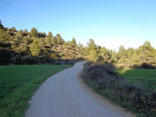road to Nuestra Posada