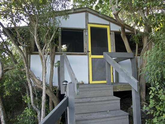 Virgin Islands Campground :                   Cabin 3