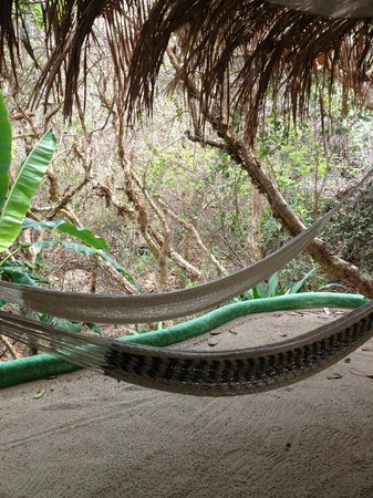 Playa Escondida:                   Hammocks on balcony 'guest house'