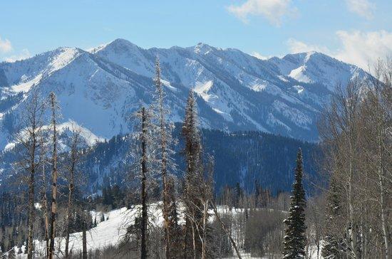 Old Faithful Snowmobile Tours - Day Tours:                   Beautiful Mountain Range
