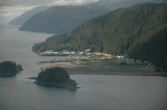 Lisianski Inlet Lodge : Lisianski Inlet Pelican