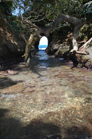 Korrigan Lodge: Punta Uva