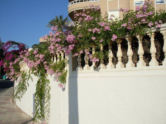 MedPlaya Hotel Pez Espada :                   Promenade sur La Caruhella