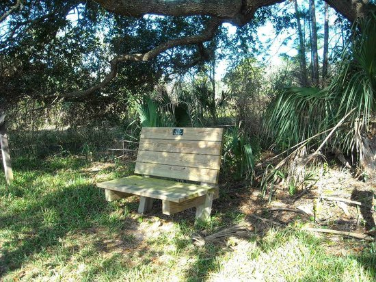 Crystal River Perserve State Park Eco-Walk :                   Rest a while and relax!