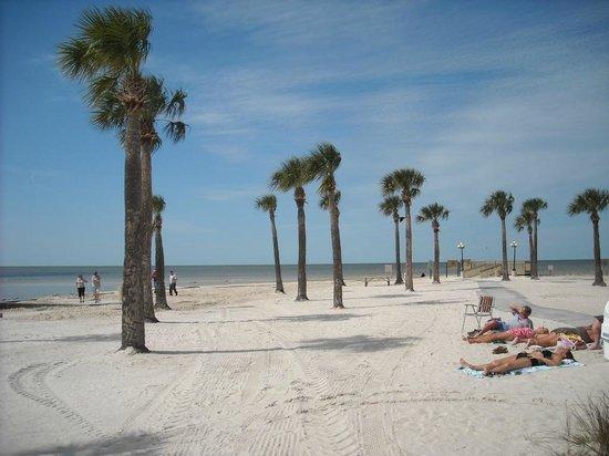 Pine Island Beach Hours