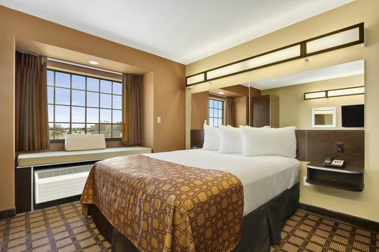 Microtel Inn & Suites by Wyndham Buda at Cabela's: Single Queen