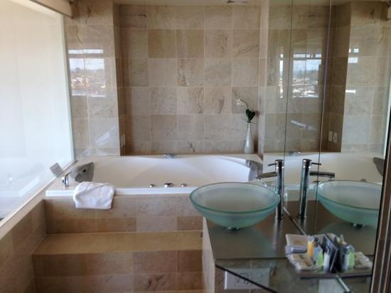 Quality Hotel Gateway :                   great spa and bathroom