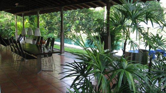 The Garden House:                                     Terrace