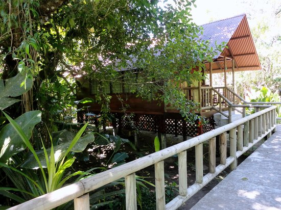 Aninga Lodge:                                     External View of One of the Rooms