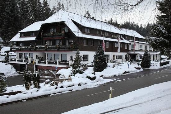 Hotel Restaurant Waldsaegmuehle :                   View from across the road