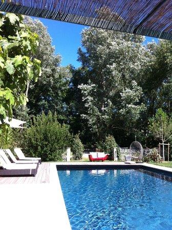 Metairie Montplaisir: Chambre d´hôtes Carcassonne, piscine extérieure