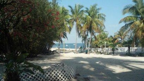 Bayside Inn Key Largo:                   The view looking out to the beach area..