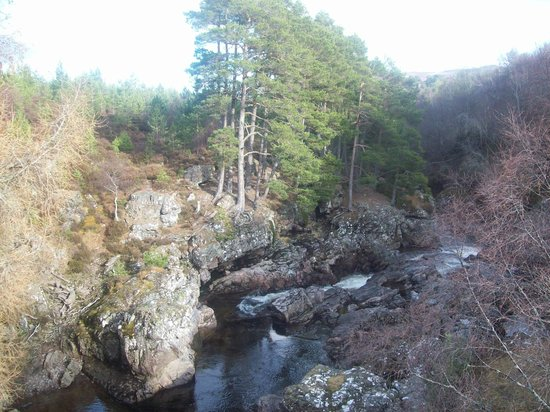 Highland Holiday Cottages:                   And there are beautiful walks around the house with this Salmon River at the b