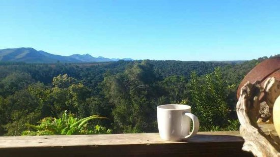 Wild Spirit Lodge and Backpackers:                   tea with view from decking