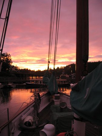 San Juan Classic Day Sailing: Sunset in Friday Harbor from the decks of the Schooner