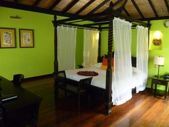 "Rio Celeste Hideaway Hotel:                                     ""Casita Forest"" room"