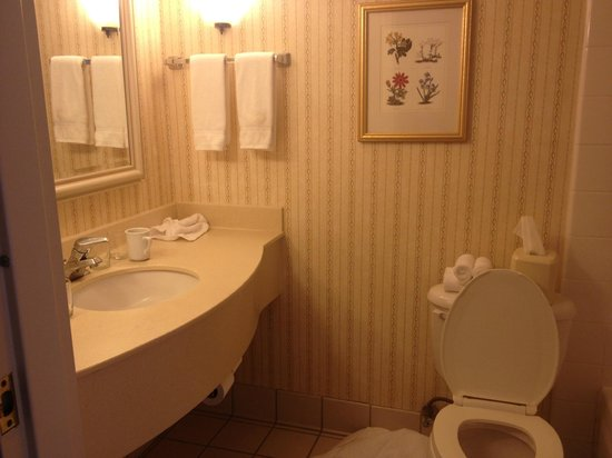 Hilton Garden Inn Plymouth:                   sink area