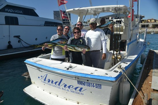 Fish fry tonight picture of pisces sportfishing cabo for Pisces fishing cabo