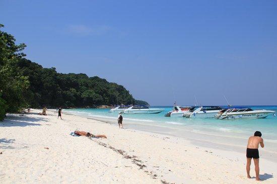 Similan Islands, Thailand:                   ตาชัยวันนี้  อนาคตจะเหมือนเดิมไหม
