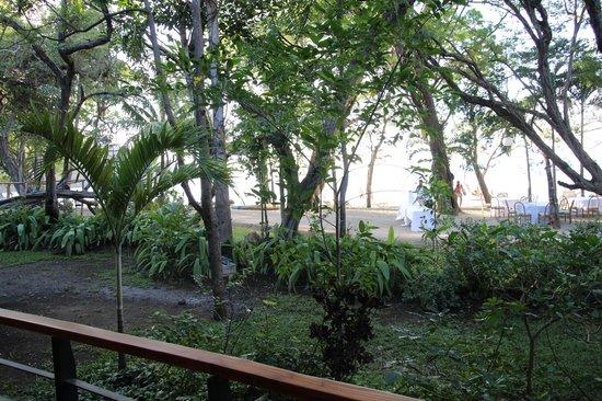 Hotel Bosque del Mar Playa Hermosa:                   outside room balcony view