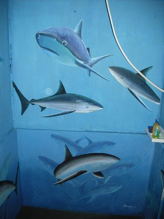 Cabinas Coloso Del Mar :                                     shower with the sharks!