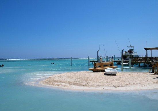 Hotel Coco Playa: Beach front