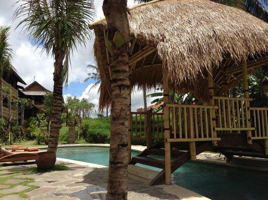 Alaya Resort Ubud:                   Pool area