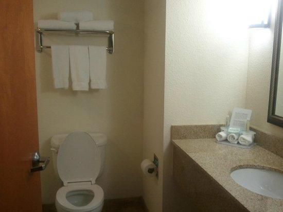 Holiday Inn Express Pembroke Pines-Sheridan St:                   Bathroom