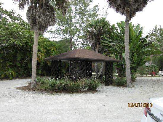 Parrot Nest:                   Gazebo