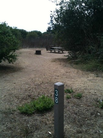 Manresa State Beach:                   Site#38: nicely private, back from trail, can hold several tents, a little sha